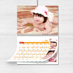 Photo Mini Wall Calendar